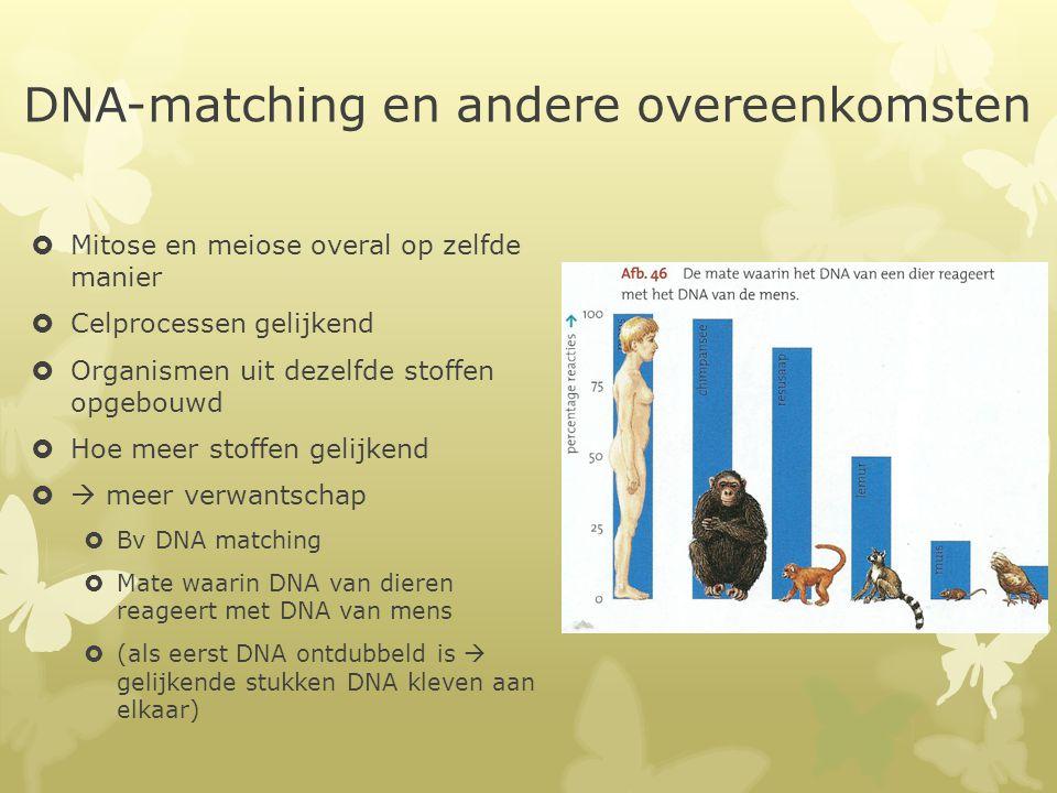 http://www.dumpert.nl/mediabas e/2233891/f7448efc/ode_aan_d... longvis