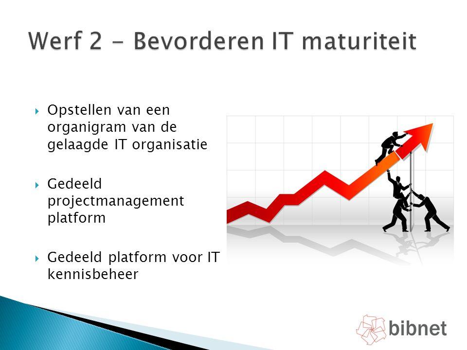  Opstellen van een organigram van de gelaagde IT organisatie  Gedeeld projectmanagement platform  Gedeeld platform voor IT kennisbeheer