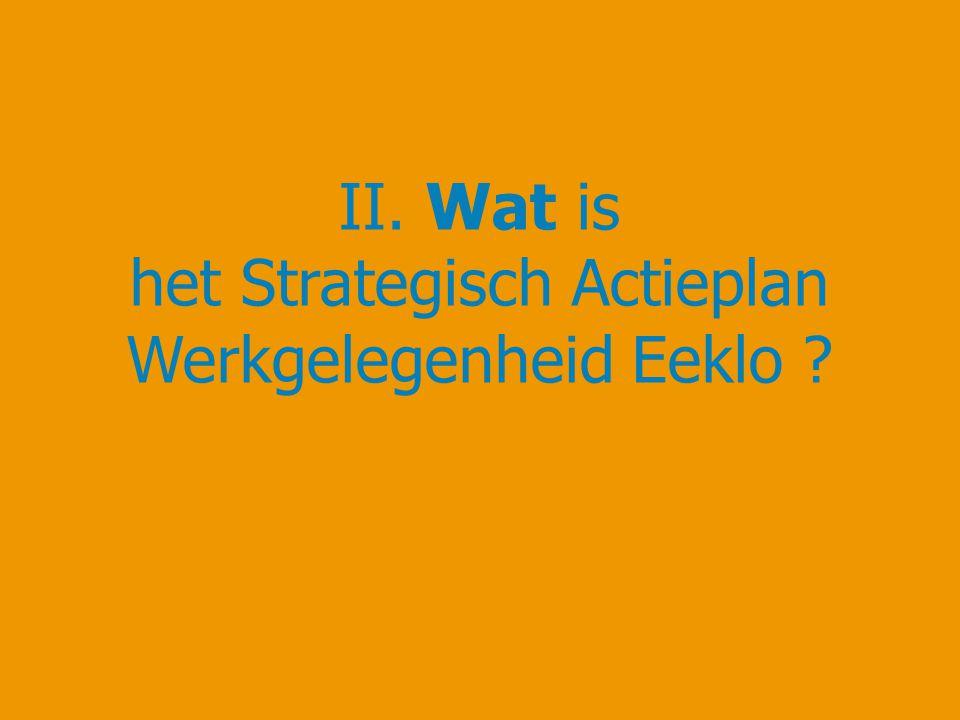 II. Wat is het Strategisch Actieplan Werkgelegenheid Eeklo