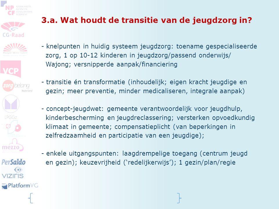 3.a.Wat houdt de transitie van de jeugdzorg in.