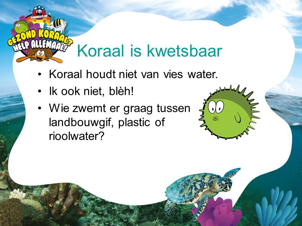•Koraal houdt niet van vies water. •Ik ook niet, blèh! •Wie zwemt er graag tussen landbouwgif, plastic of rioolwater? Koraal is kwetsbaar