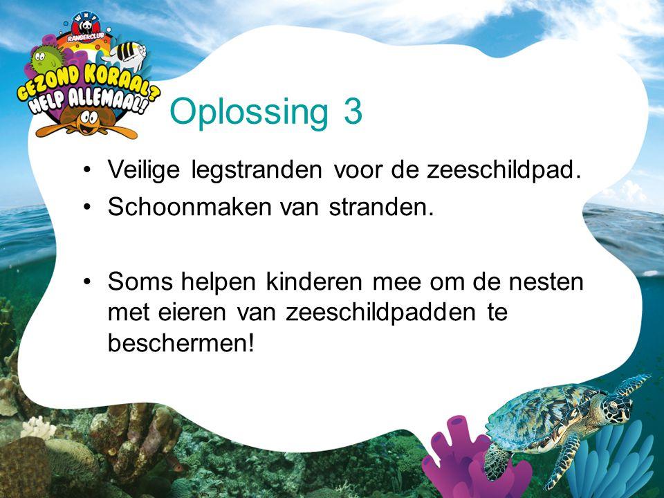 •Veilige legstranden voor de zeeschildpad. •Schoonmaken van stranden. •Soms helpen kinderen mee om de nesten met eieren van zeeschildpadden te bescher