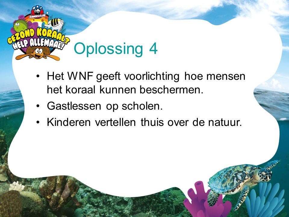 •Het WNF geeft voorlichting hoe mensen het koraal kunnen beschermen. •Gastlessen op scholen. •Kinderen vertellen thuis over de natuur. Oplossing 4