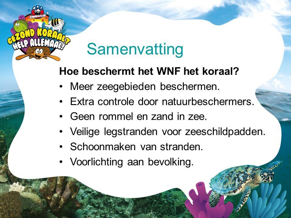 Hoe beschermt het WNF het koraal? •Meer zeegebieden beschermen. •Extra controle door natuurbeschermers. •Geen rommel en zand in zee. •Veilige legstran