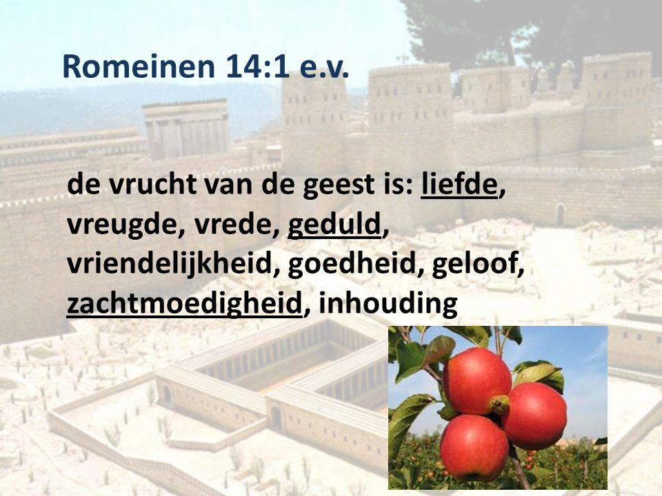 Romeinen 14:1 e.v. de vrucht van de geest is: liefde, vreugde, vrede, geduld, vriendelijkheid, goedheid, geloof, zachtmoedigheid, inhouding