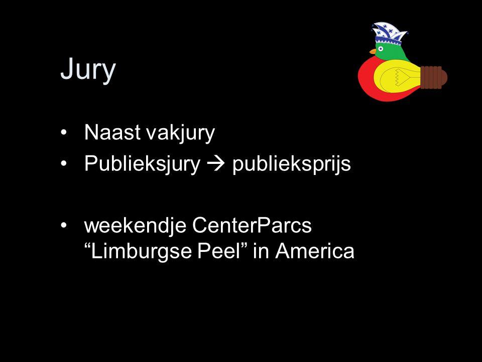 """Jury •Naast vakjury •Publieksjury  publieksprijs •weekendje CenterParcs """"Limburgse Peel"""" in America"""