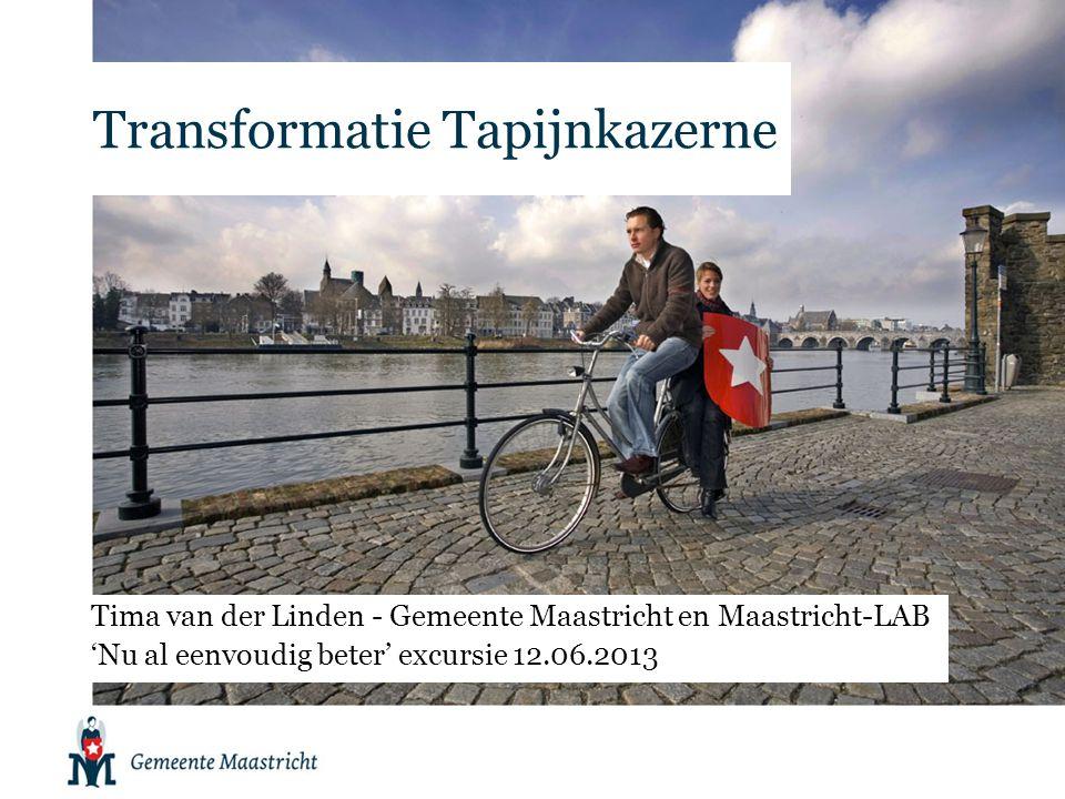 Maastricht-LAB •Ontstaan als katalysator in zoektocht naar nieuwe vormen van stadsontwikkeling •Tijdelijk platform (tot 2014) •Drie pijlers: –Nieuwe coalities –Experimenteren –Kennisuitwisseling