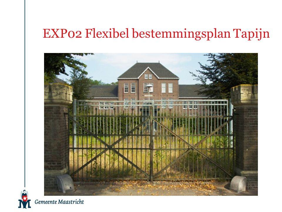 EXP02 Flexibel bestemmingsplan Tapijn