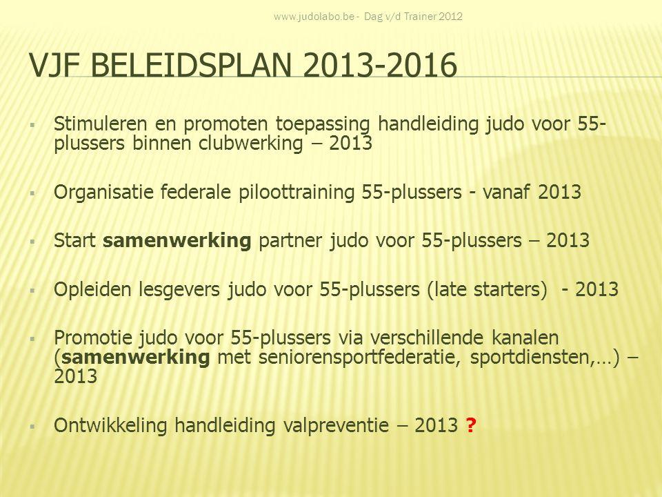 VJF BELEIDSPLAN 2013-2016  Stimuleren en promoten toepassing handleiding judo voor 55- plussers binnen clubwerking – 2013  Organisatie federale pilo