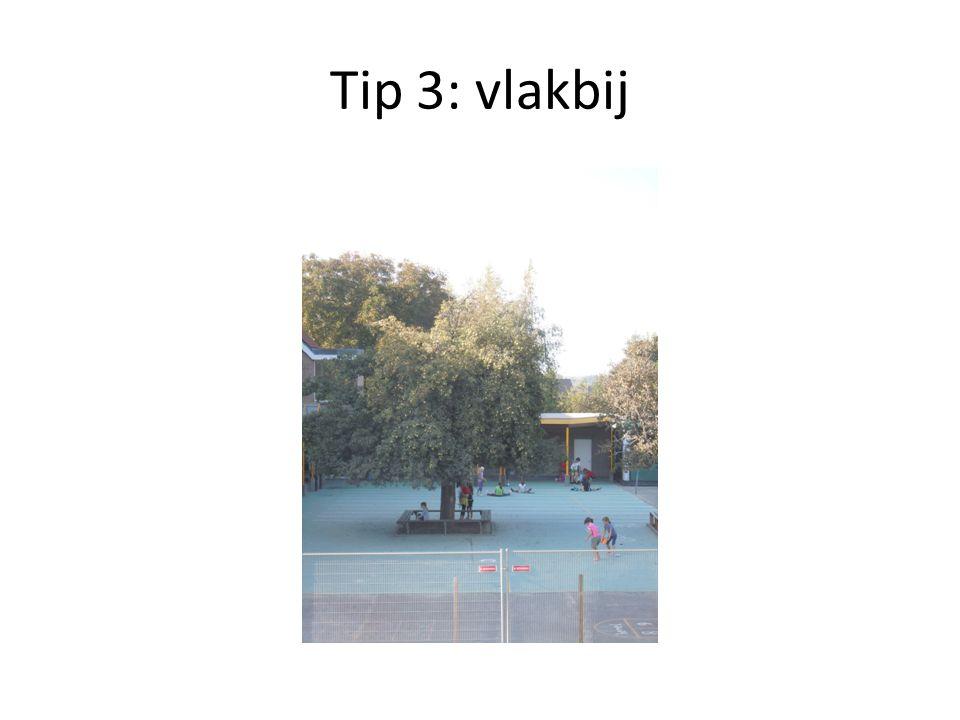 Tip 4: Naar buiten!