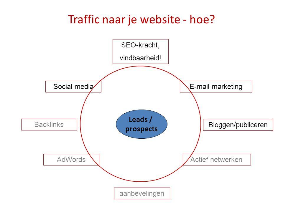 Traffic naar je website - hoe? SEO-kracht, vindbaarheid! E-mail marketing Bloggen/publiceren Actief netwerken Social media AdWords Leads / prospects a