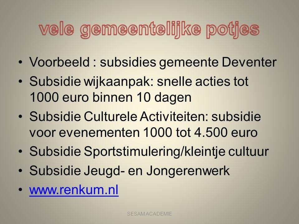 •Voorbeeld : subsidies gemeente Deventer •Subsidie wijkaanpak: snelle acties tot 1000 euro binnen 10 dagen •Subsidie Culturele Activiteiten: subsidie