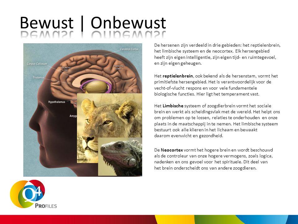 Het reptielenbrein, ook bekend als de hersenstam, vormt het primitiefste hersengebied. Het is verantwoordelijk voor de vecht-of-vlucht respons en voor