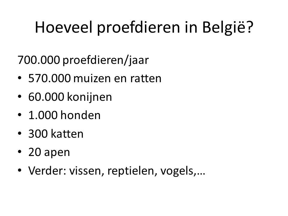 Hoeveel proefdieren in België? 700.000 proefdieren/jaar • 570.000 muizen en ratten • 60.000 konijnen • 1.000 honden • 300 katten • 20 apen • Verder: v