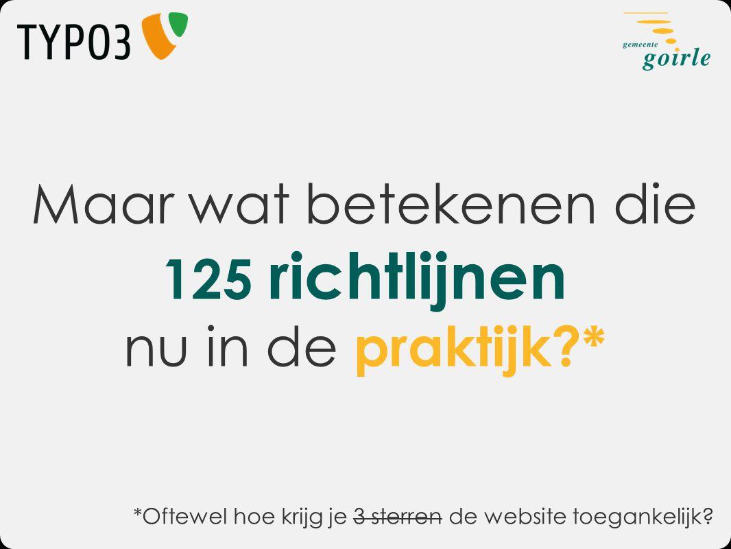 Maar wat betekenen die 125 richtlijnen nu in de praktijk?* *Oftewel hoe krijg je 3 sterren de website toegankelijk?