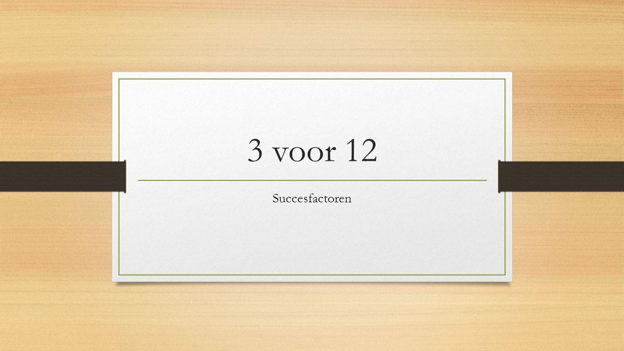 3 voor 12 Succesfactoren
