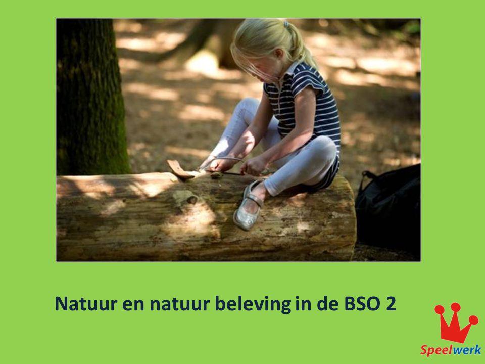 Natuur en natuur beleving in de BSO 2