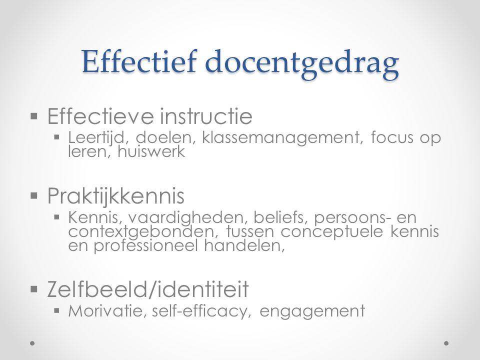 Effectief docentgedrag  Effectieve instructie  Leertijd, doelen, klassemanagement, focus op leren, huiswerk  Praktijkkennis  Kennis, vaardigheden,