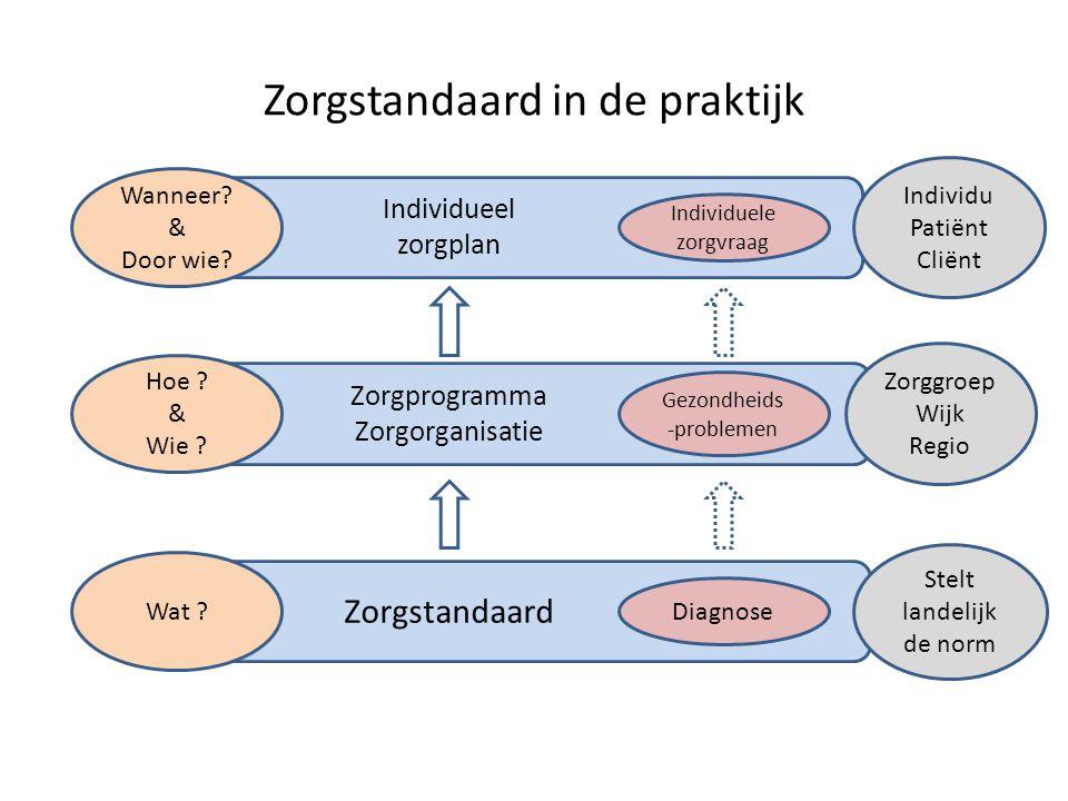 Zorgstandaard in de praktijk Individuele zorgvraag Diagnose Hoe ? & Wie ? Wat ? Stelt landelijk de norm Wanneer? & Door wie? Individu Patiënt Cliënt Z
