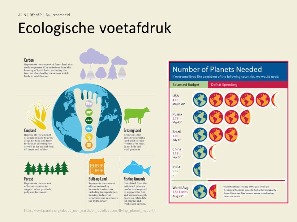 Ecologische voetafdruk http://wwf.panda.org/about_our_earth/all_publications/living_planet_report/ A1-9   REcoEP   Duurzaamheid
