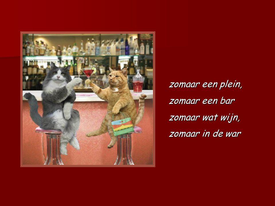 Hondenhumor Kattengein Film is voorzien van geluid