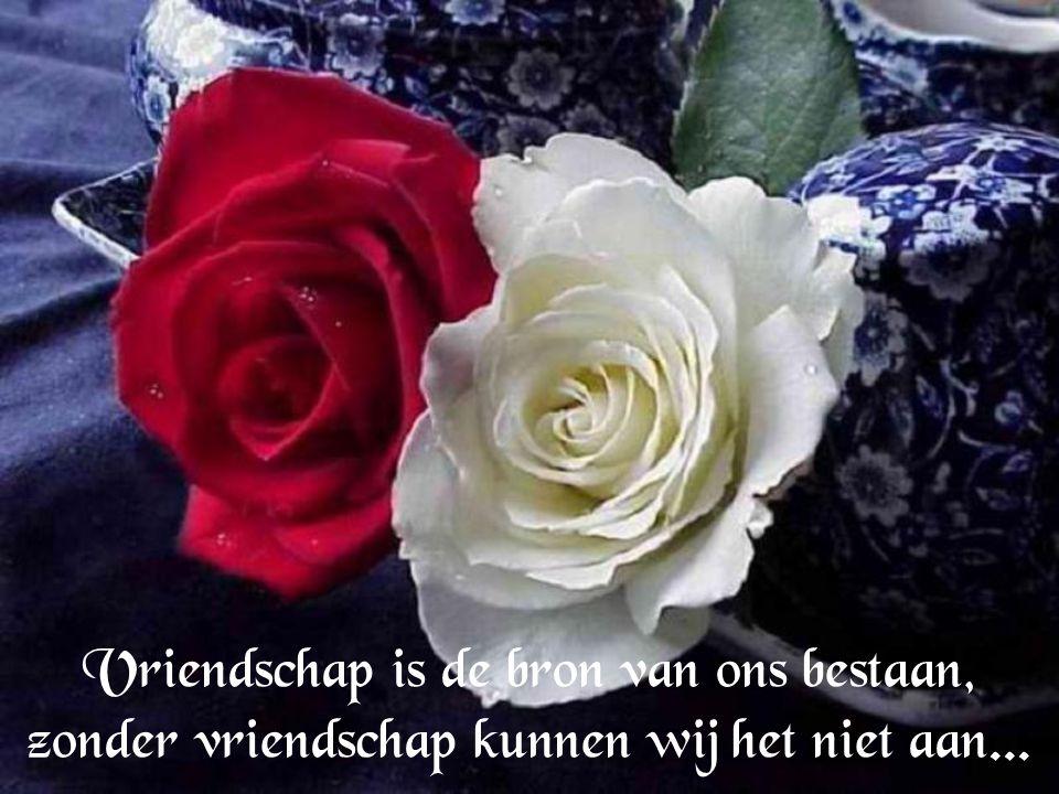 Vriendschap kun je echt niet kopen, daar mag je enkel maar op hopen...