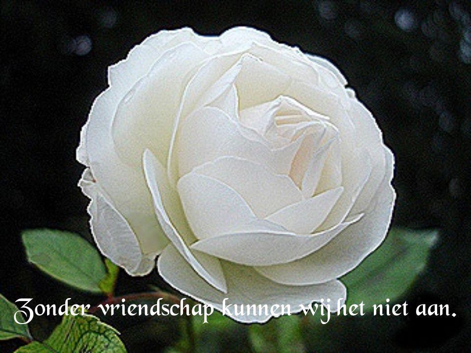 Vriendschap is de bron van ons bestaan...