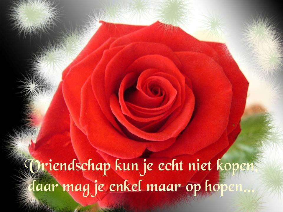 Vriendschap voor het leven, vaak duurt ze maar heel even...