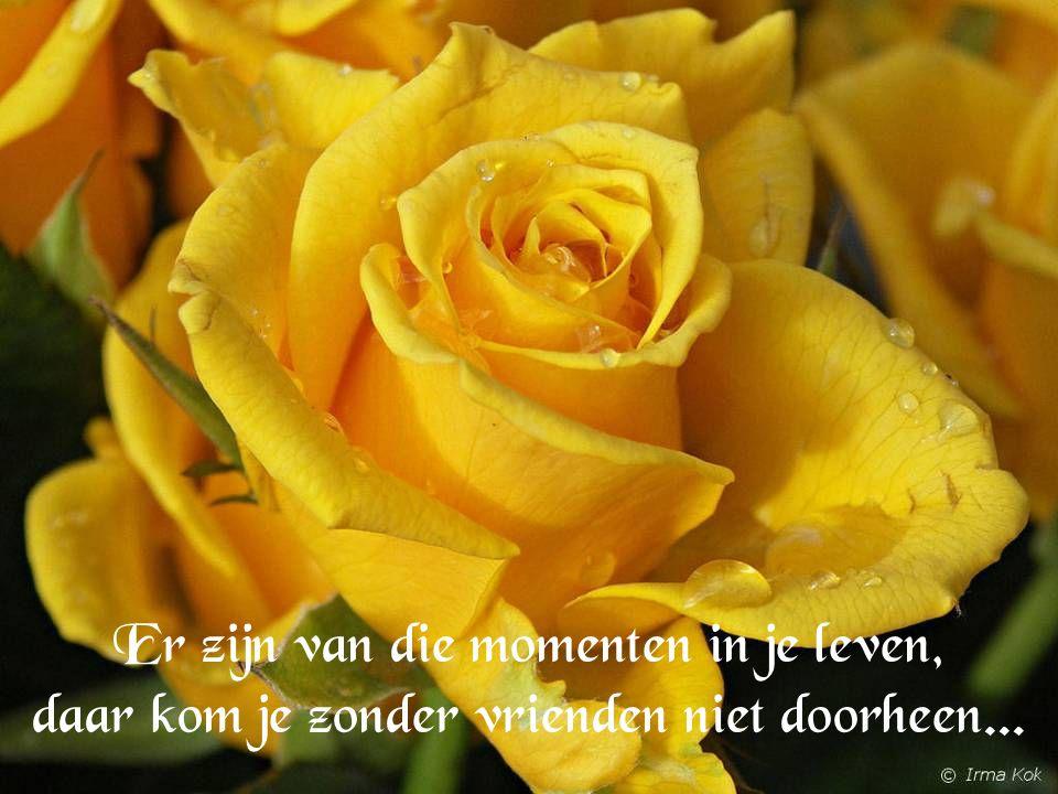 Er zijn van die momenten in je leven, daar kom je zonder vrienden niet doorheen...