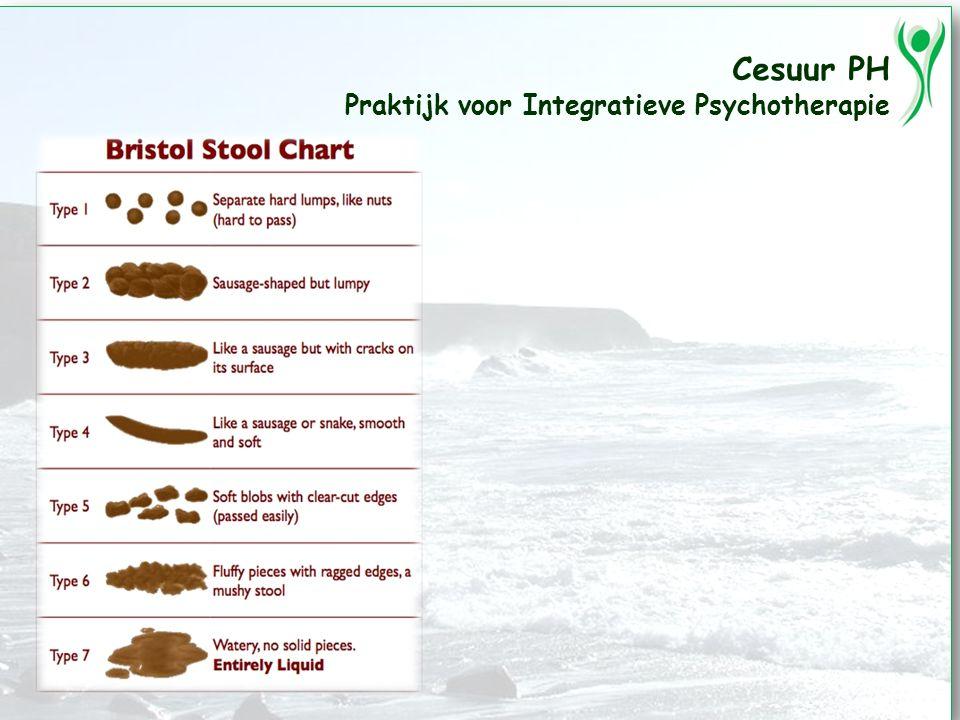 Cesuur PH Praktijk voor Integratieve Psychotherapie Problemen met de stoelgang Te veel Te weinig Te hard Te zacht