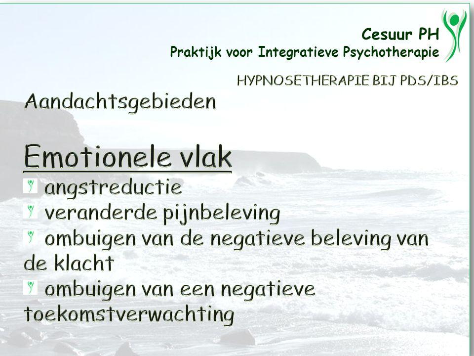 Cesuur PH Praktijk voor Integratieve Psychotherapie 2010-03-20