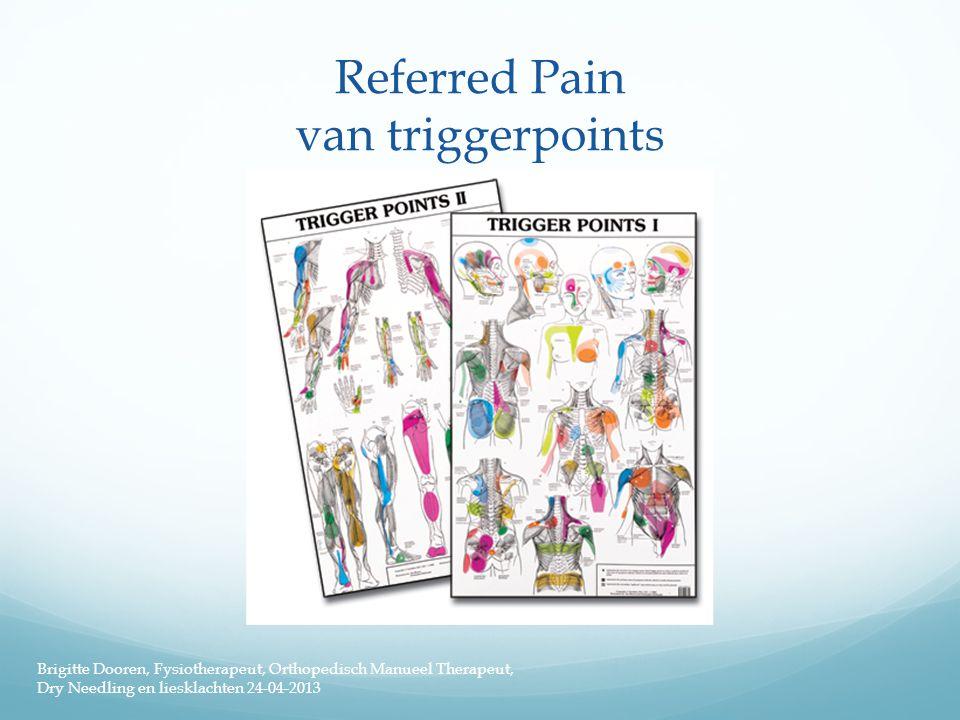 Referred Pain van triggerpoints Brigitte Dooren, Fysiotherapeut, Orthopedisch Manueel Therapeut, Dry Needling en liesklachten 24-04-2013