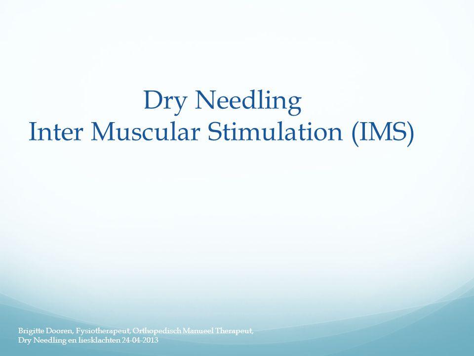 Dry Needling Inter Muscular Stimulation (IMS) Brigitte Dooren, Fysiotherapeut, Orthopedisch Manueel Therapeut, Dry Needling en liesklachten 24-04-2013