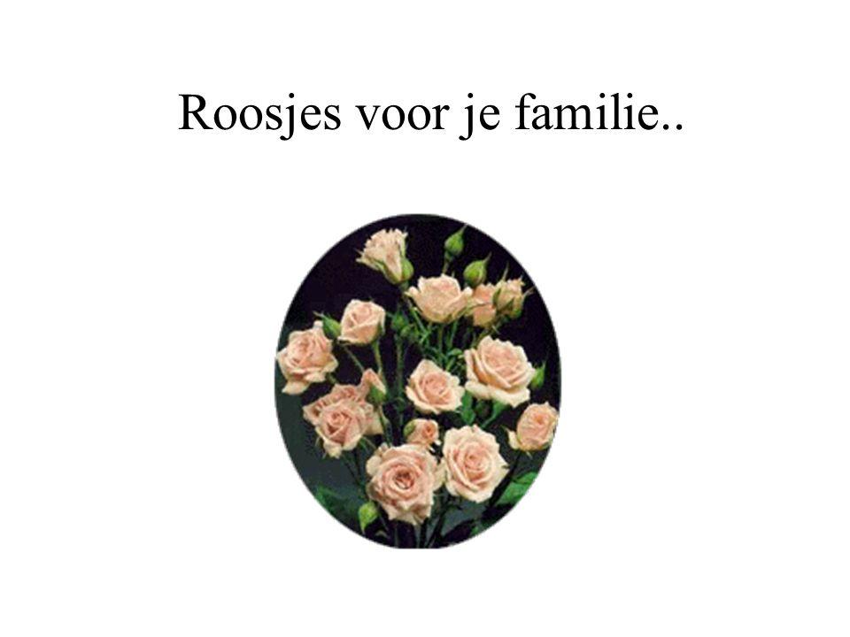 Roosjes voor je familie..
