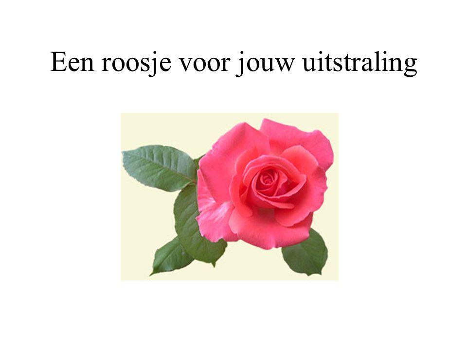 Een roosje omdat je heel veel voor mij betekend.