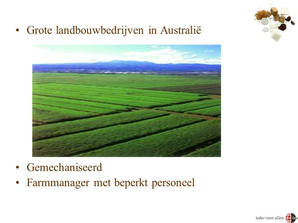 •Grote landbouwbedrijven in Australië •Gemechaniseerd •Farmmanager met beperkt personeel