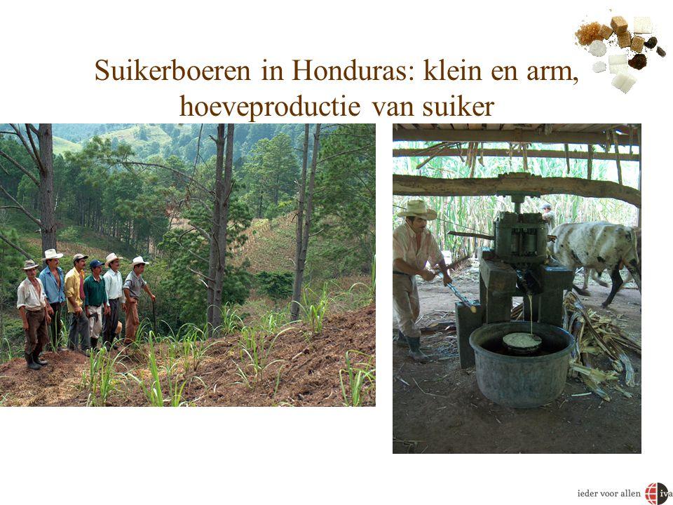 Suikerboeren in Honduras: klein en arm, hoeveproductie van suiker