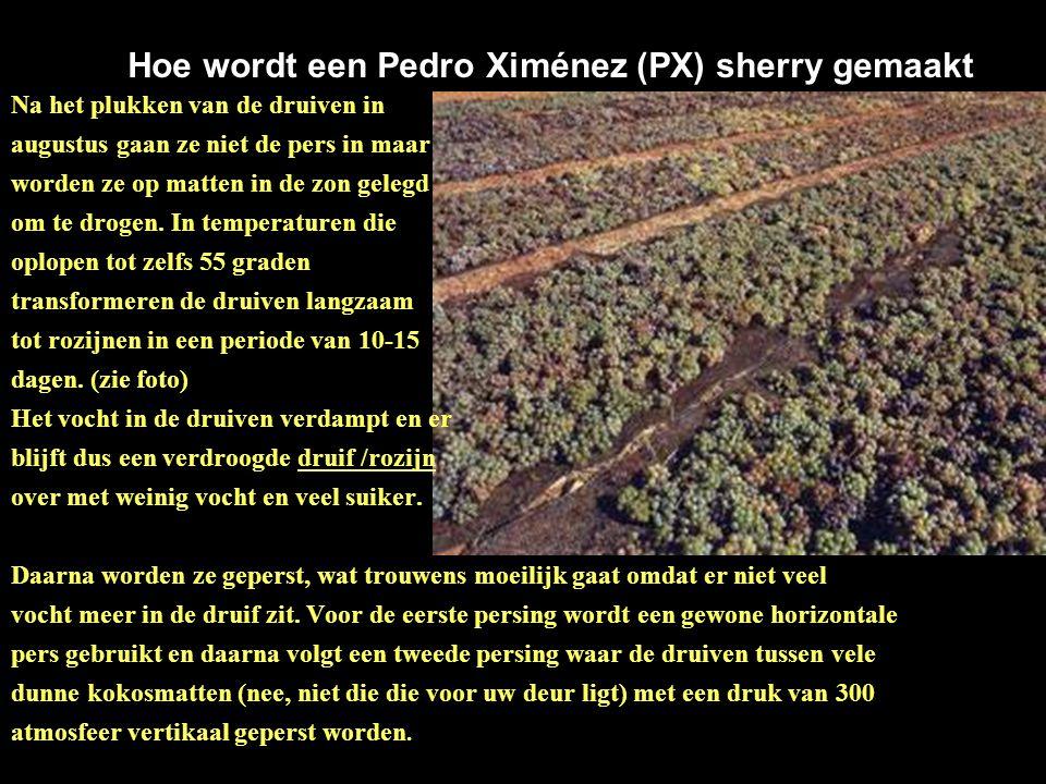 """jVoor wie, die net als ik, enige jaren geleden zijn neus ophaalde voor sherry zou ik toch aanraden eens een heerlijke zoete sherry met de """"Pedro Ximén"""
