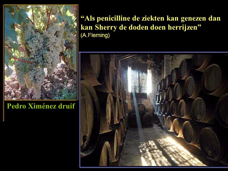 Het maken van sherry De jongere sherry van de bovenste fusten (vaten) wordt overgegoten vanaf hogere naar en lagere fust met reeds oudere sherry, met