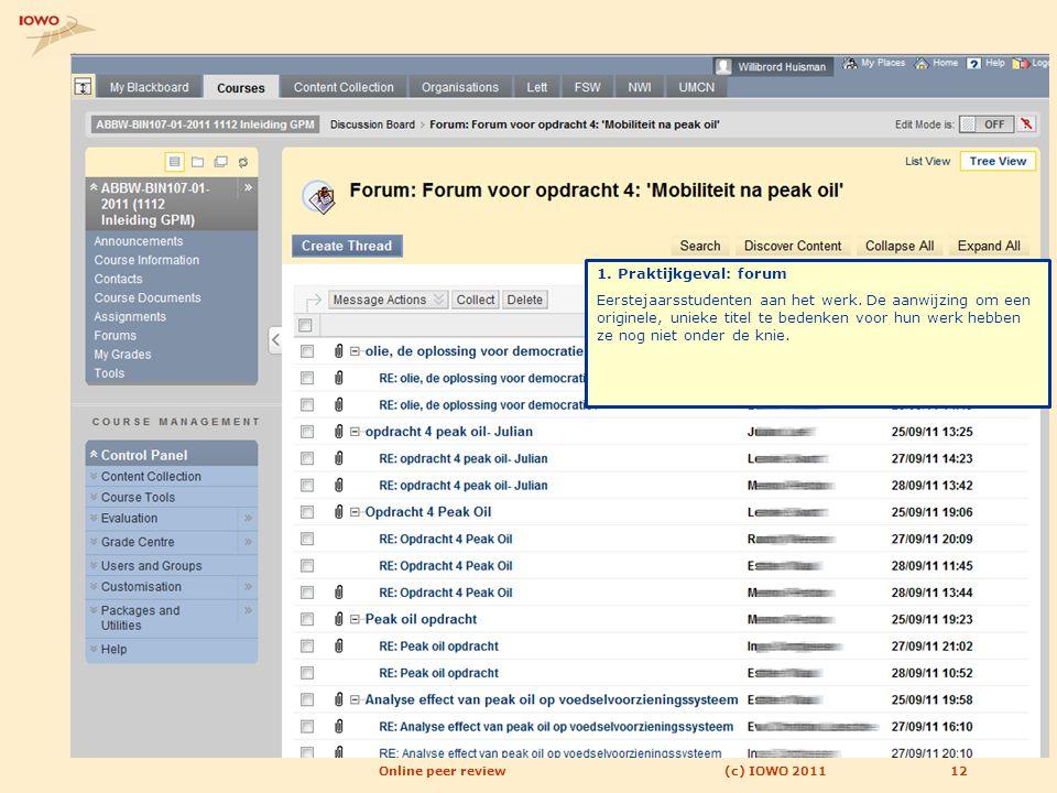 12(c) IOWO 2011Online peer review 1. Praktijkgeval: forum Eerstejaarsstudenten aan het werk. De aanwijzing om een originele, unieke titel te bedenken