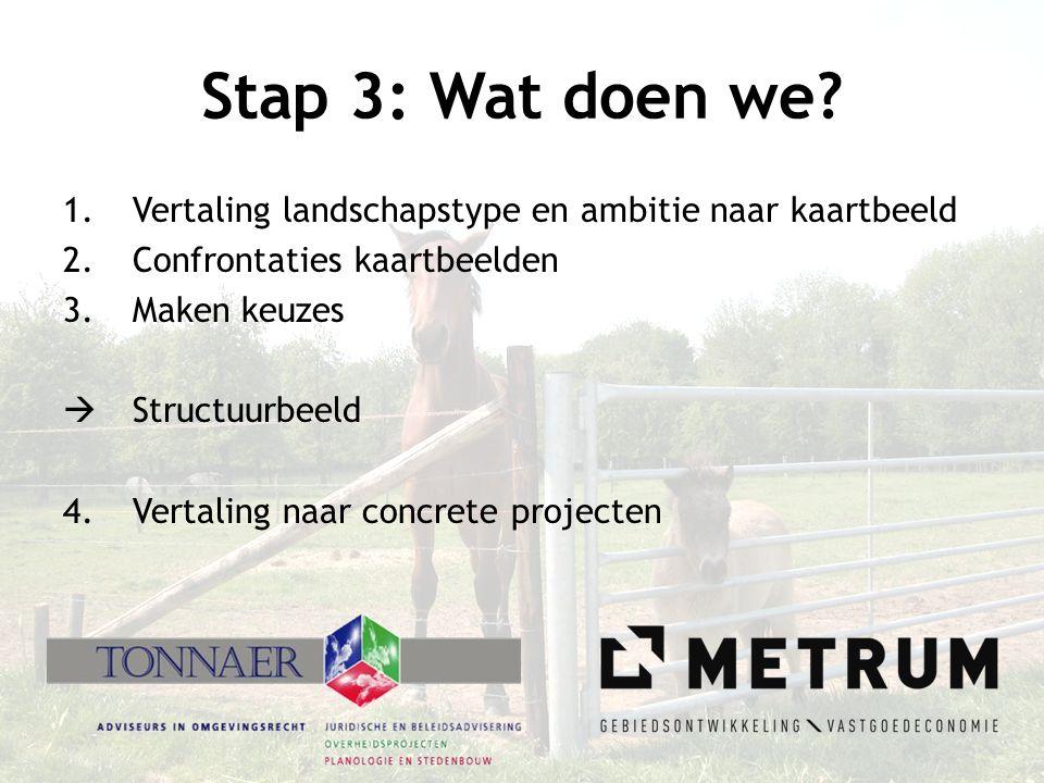 Stap 3: Wat doen we? 1.Vertaling landschapstype en ambitie naar kaartbeeld 2.Confrontaties kaartbeelden 3.Maken keuzes  Structuurbeeld 4.Vertaling na
