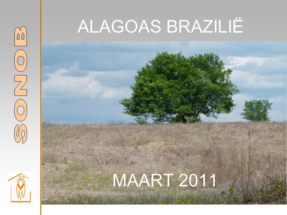 ALAGOAS BRAZILIË MAART 2011