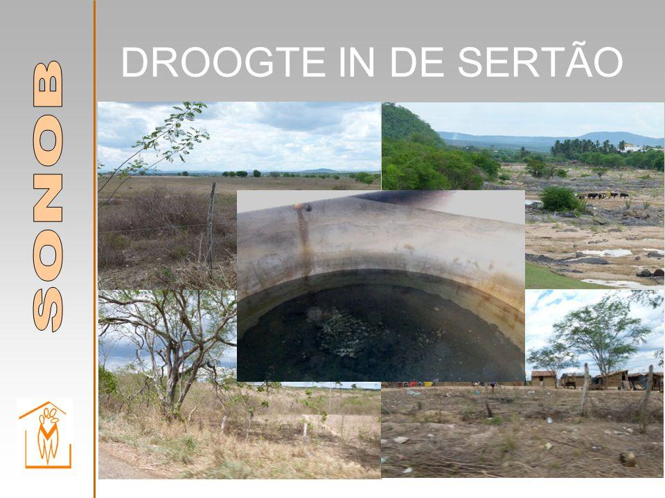 DROOGTE IN DE SERTÃO