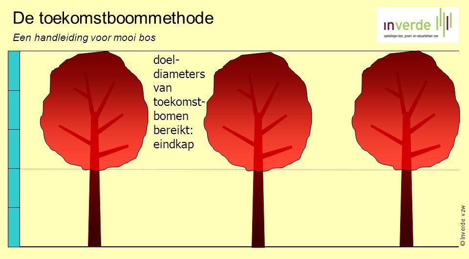 © Inverde vzw De toekomstboommethode Een handleiding voor mooi bos doel- diameters van toekomst- bomen bereikt: eindkap