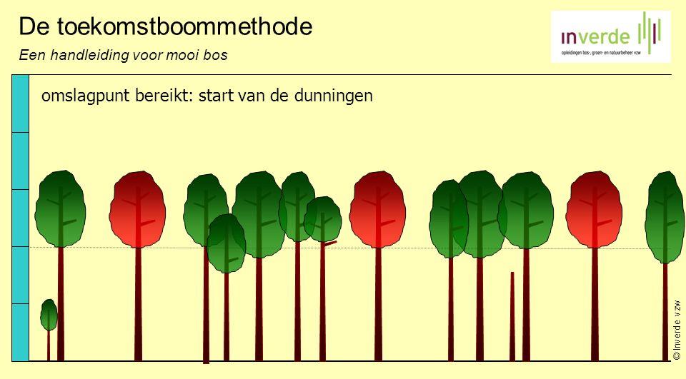 © Inverde vzw De toekomstboommethode Een handleiding voor mooi bos omslagpunt bereikt: start van de dunningen