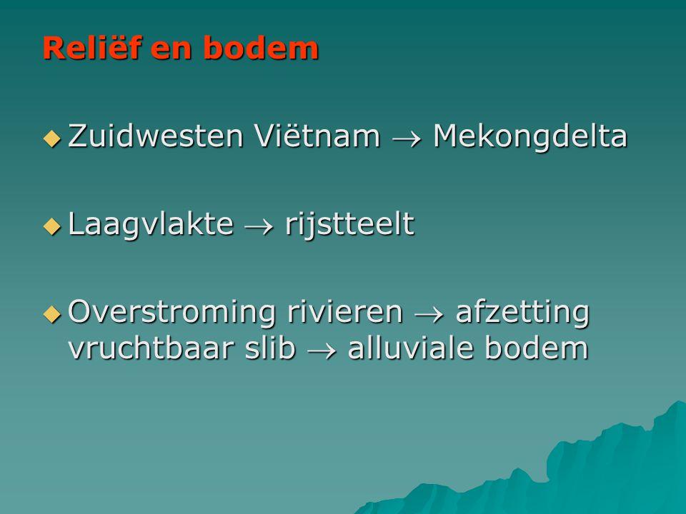 Reliëf en bodem  Zuidwesten Viëtnam  Mekongdelta  Laagvlakte  rijstteelt  Overstroming rivieren  afzetting vruchtbaar slib  alluviale bodem