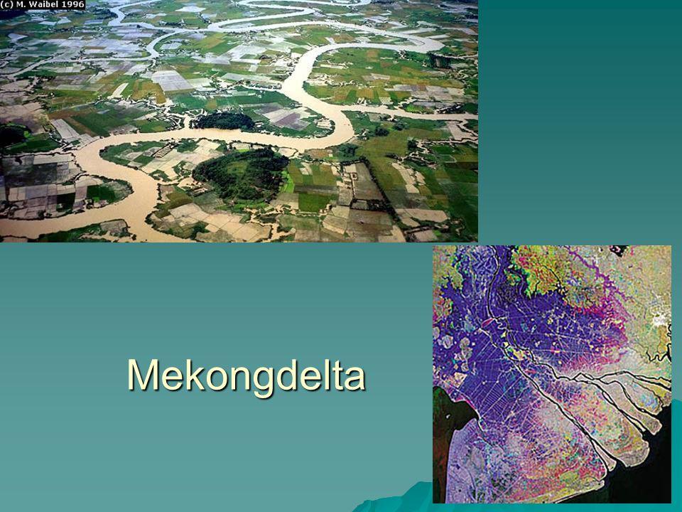1 De Mekongdelta, de rijstschuur van Vietnam  Atlaskaart 80/81 en 119 C  Orohydrografische kaart: voorstelling van de neerslag in een bepaald gebied.