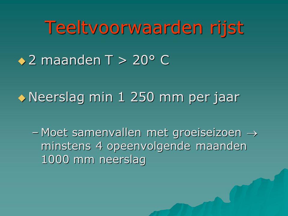 Teeltvoorwaarden rijst  2 maanden T > 20° C  Neerslag min 1 250 mm per jaar –Moet samenvallen met groeiseizoen  minstens 4 opeenvolgende maanden 10