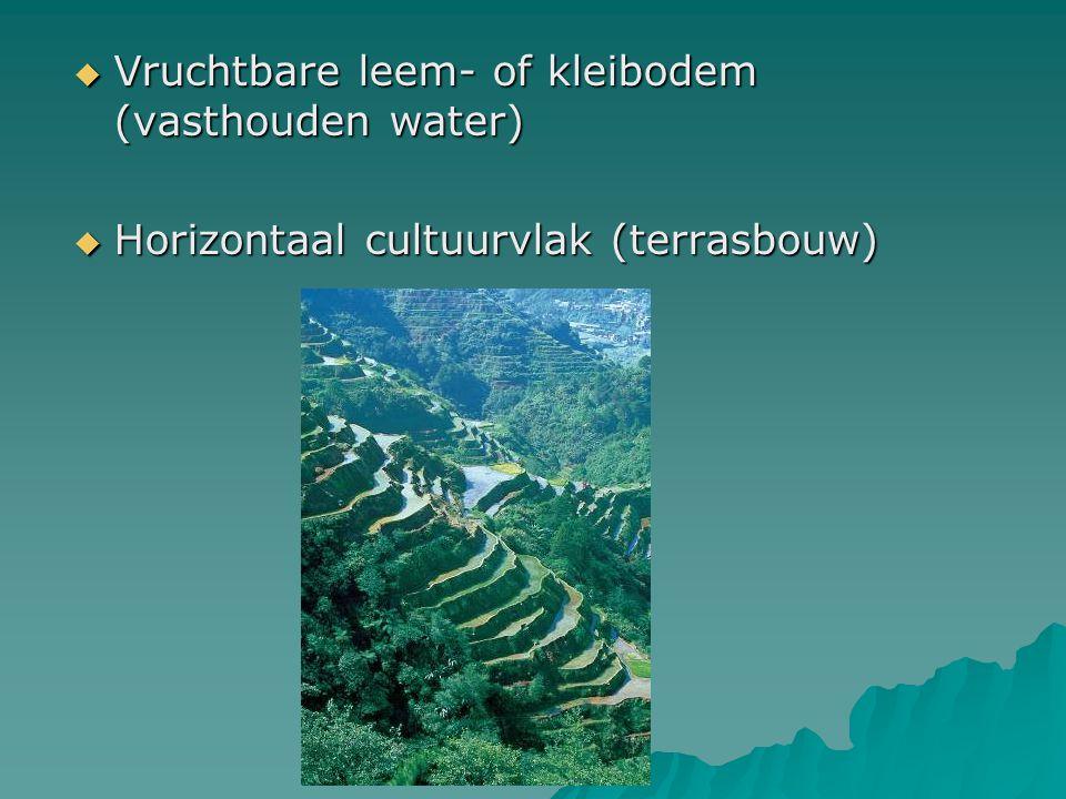  Vruchtbare leem- of kleibodem (vasthouden water)  Horizontaal cultuurvlak (terrasbouw)