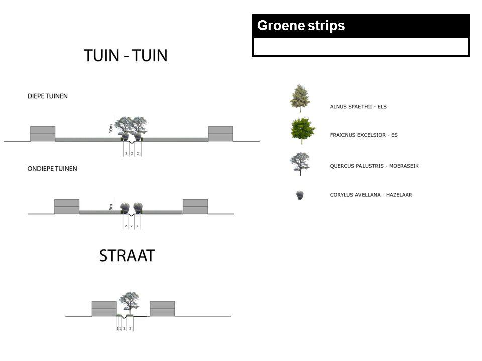 TECHNUM Groene strips